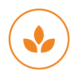 An orange circle containing an orange graphic of a plant.
