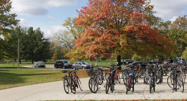 A photo of a well-populated bike rack in front of a large tree full of fall colors.